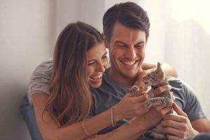 Eine neue Katze oder ein Katzenjunges bei sich zu Hause begrüßen, ist ein tolles und spannendes Erlebnis